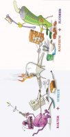 Remineralisatsioon ja demineralisatsioon