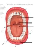 Tööleht: Minu suu osad