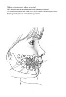Tööleht: Hambad minu suus