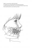 Hambad minu suus